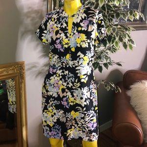 Ann Taylor Floral Dress 👗 Size 6